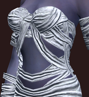 Moldering Mummy Chest Wraps (Equipped)
