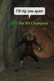 The Pit Champion
