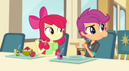 Apple Bloom and Scootaloo look at the Dazzlings EG2