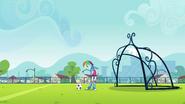 Soccer ball rolls next to Rainbow's feet EG