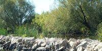 Liberty Park/Lake Liberty/Stone Pier
