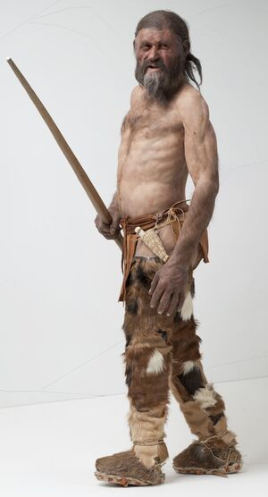 Otzi Based On