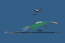 Size comparasince aquamarinear vs human diver - Copy (2)