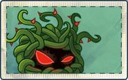 Tangle Kelp (Old PVZAS Design) Seed Packet