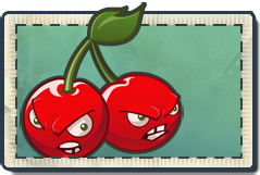File:Cherry Bomb Seed Packet.png