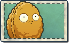 File:Wall-nut Seed Packet.png