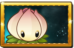 File:Power Lily New Premium Seed Packet.png