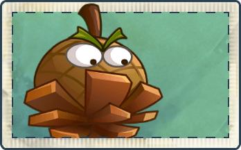 File:Hazelnut Ball Seed Packet.png