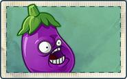 Eggplant Seed Packet