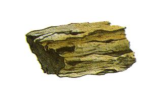 Archivo:Piedra Levi.png