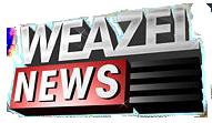 Archivo:Weazelnews noticias.png