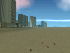 Playa-VicePoint