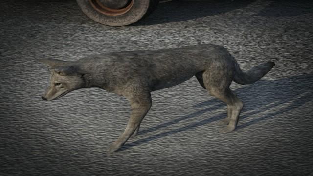 Archivo:Coyote-GTAV.jpg