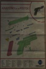 Pistola Anatomía.jpg