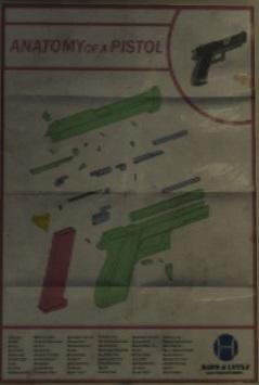 Archivo:Pistola Anatomía.jpg