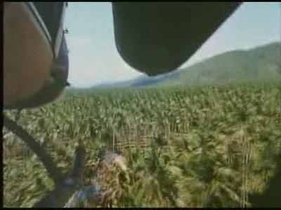 80th Vice Desaparecida en Vietnam. 2ª parte. Persecución XIX
