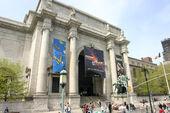 Museo Libertonian-realidad.jpg