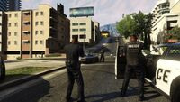Policía operativo