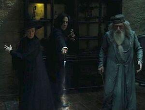 Severus spell.JPG