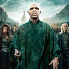 Mortífagos y Voldemort