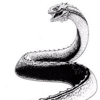 Ilustracion del basilisco