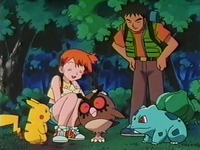Archivo:EP123 Brock Misty Hoothoot Pikachu y Bulbasaur.jpg