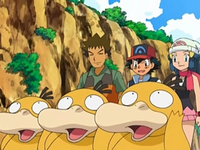 Archivo:EP556 Psyduck (6).png