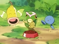 Archivo:EP010 Weepinbell, Caterpie y Oddish.png