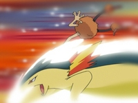 EP331 Typhlosion vs Doduo