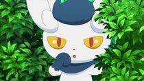 EP849 Meowstic hembra