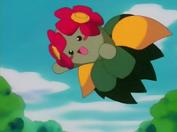 Archivo:EP124 Bellossom (3).png