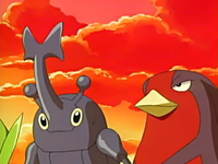 Archivo:EP441 Heracross y Swellow.png