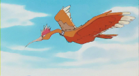 Archivo:P01 Fearow.png