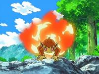 Archivo:EP550 Chimchar liberando su habilidad.png
