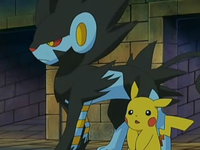 Archivo:EP528 Luxray y Pikachu.png
