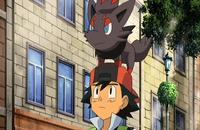 P13 Zorua sobre la gorra de Ash.png