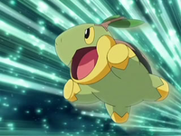 Archivo:EP569 Turtwig.png