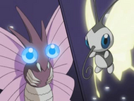 EP289 Beautifly vs Venomoth