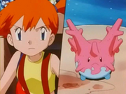 EP218 Corsola y Misty.png