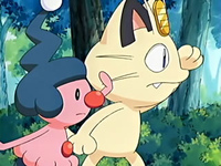 Archivo:EP431 Meowth y Mime Jr..png