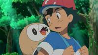 EP947 Rowlet en la mochila de Ash