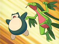 Archivo:EP426 Grovyle y Snorlax.png