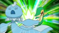 EP670 Frillish vs Snivy de Ash