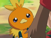 EP278 Torchic triste.png