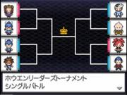 Torneo Mundial Pokémon N2B2 Líderes de Hoenn.png
