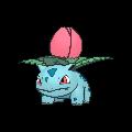 Ivysaur XY