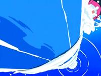 Archivo:EP546 Finneon usando cascada (4).png