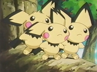 Archivo:EP181 Pichu (3).png