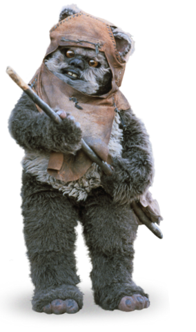 Archivo:Wicket detail.png