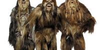 Wookiee